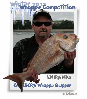 2011 Winter Whoppa Snapper - Mike